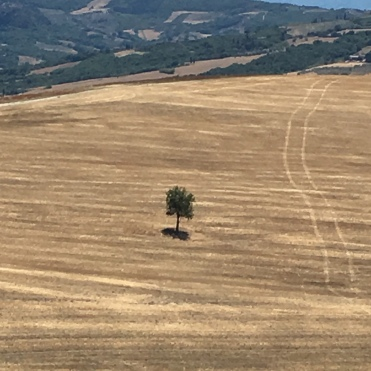 minimalist manifestation on the road to the chapel